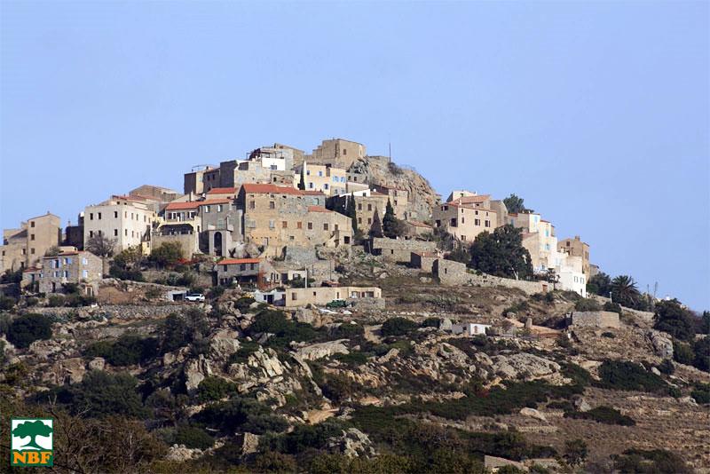 Sant Antonino