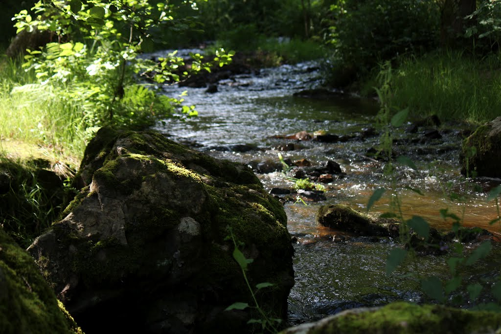 La cascade des Moulines