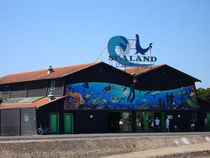l'Aquarium de Noirmoutier Par --Pinpin  CC-BY-SA-3.0 via Wikimedia Commons
