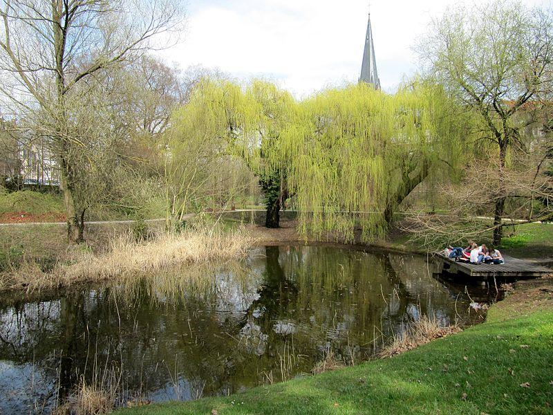 Jardin Botanique de Strasbourg CC BY 2 via Wikimedia Commons