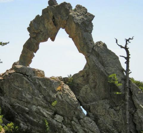 L'arche de Padule