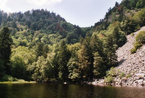 Le Lac de Fischboedlé