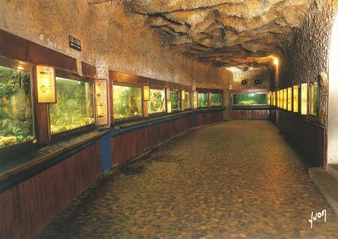 Musée aquarium d'Arcachon