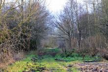 Vred - Réserve Naturelle Régionale de la Tourbière