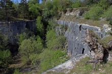 La pelouse calcaire [Génicourt-sur-Meuse]