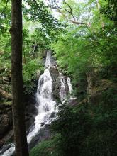 Gorges de Narvaux