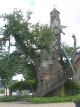 Le Chêne d'Allouville-Bellefosse