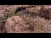 Vidéo Vtt dans les tourbières de Longéroux (longeyroux)