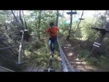 Feeling Forest en vidéo