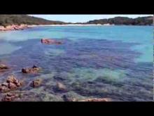 Vidéo l'anse de Rondinara