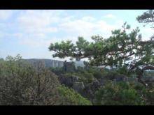Vidéo du Site du Chaos de Montpellier-le-Vieux