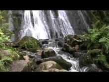 Vidéo de la Cascade de la Pissoire (Haut du Tôt - Vosges)