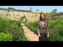 Château de Canon et ses jardins en vidéo