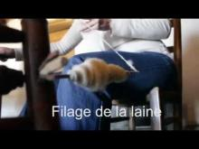 Le Daviaud, Ecomusée du marais vendéen en vidéo