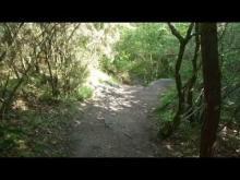 Légende: La Foret de Broceliande