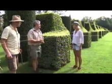 Les jardins du Manoir d'Eyrignac en Vidéo