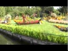 Les Hortillonnages d'Amiens en Vidéo