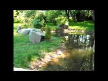 Musée Gantner en vidéo
