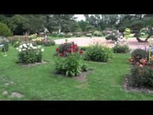 Vidéo du parc floral d'Orléans