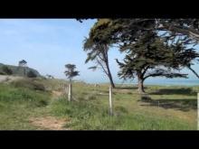 Vidéo de la Plage des Sables-d'Or-les-Pins