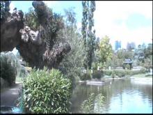 Le Jardin d'Acclimatation en vidéo