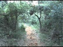 Le Moulin de Ribaute en Vidéo