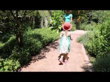 Jardin des fontaines pétrifiantes en vidéo
