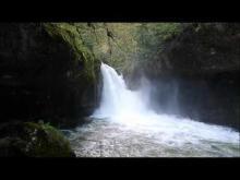 Vidéo de la Source de l'Ain