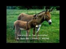Parc Animalier de St Michel en vidéo