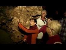 Vidéo de la Grotte de Pech Merle