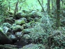 Vidéo du Roc-branlant à Saint-Estèphe