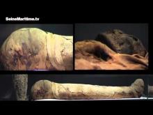 Musée Départemental des antiquités en vidéo