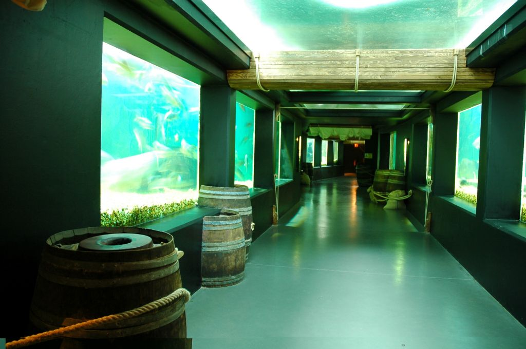Aquarium Val de Loire-Touraine