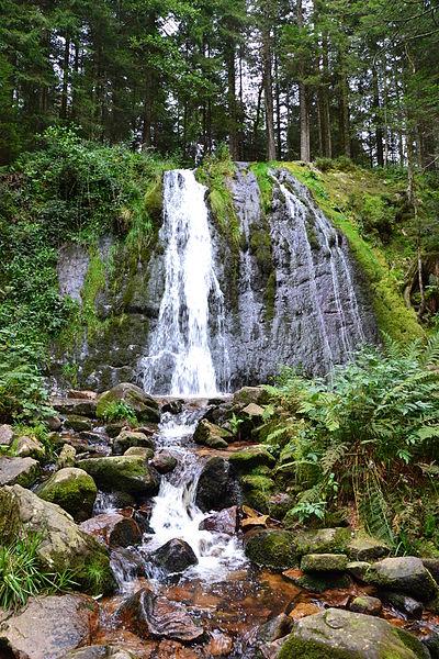 Cascade de la Pissoire (Haut du Tôt - Vosges) Par Sapin88 CC BY-SA 3.0  via Wikimedia Commons