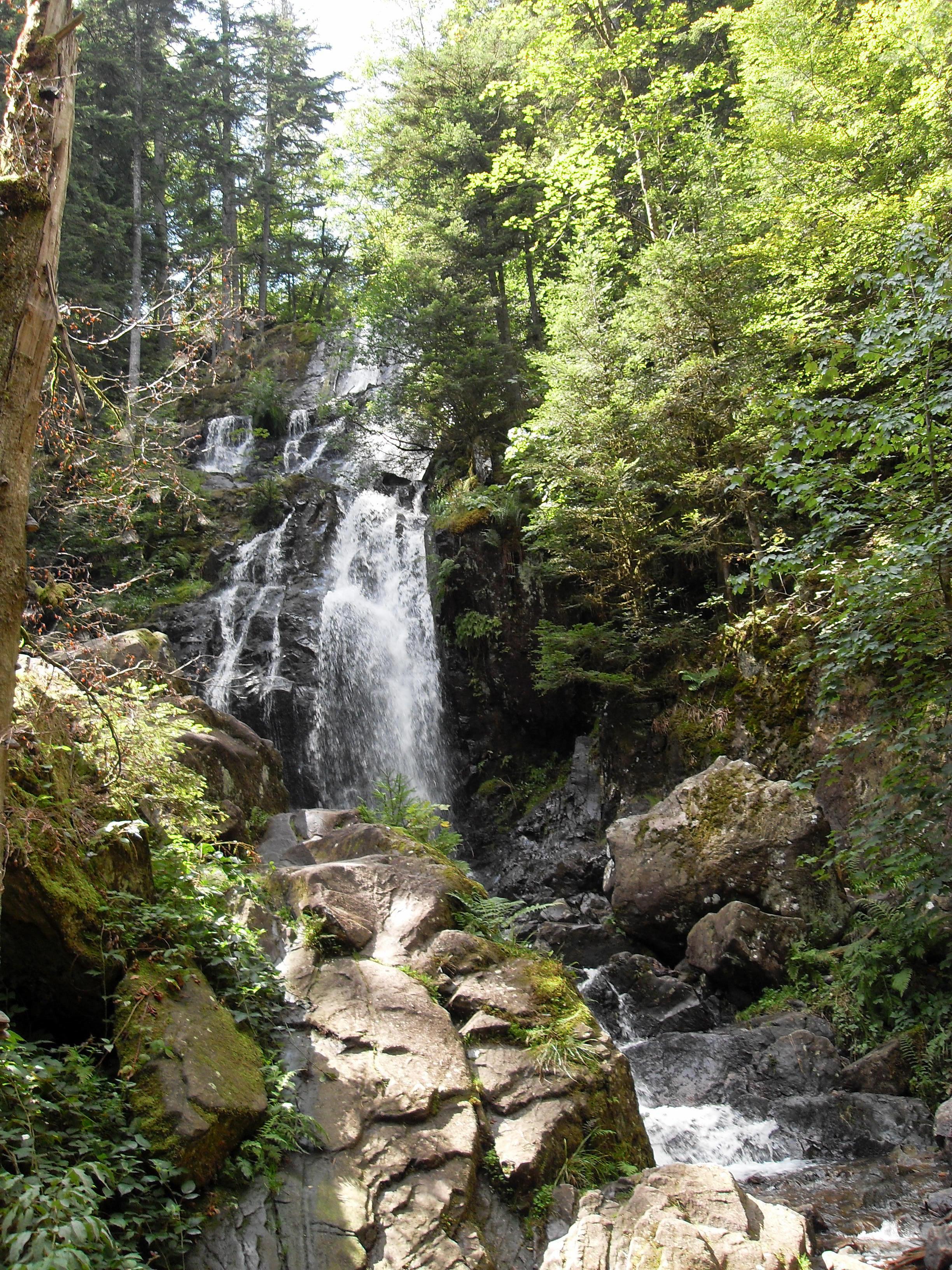 Cascades de Tendon