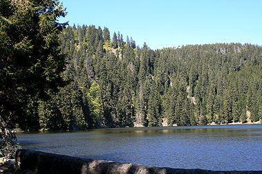 Le lac Vert ou lac de Soultzeren