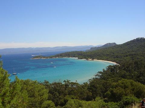 l'île de Porquerolles Alexandre Delesse (Prométhée) CC BY-SA 3.0 via Wikimedia Commons
