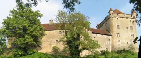 Château Fort du Pin By Arnaud 25 CC BY-SA 3.0 via Wikimedia Commons