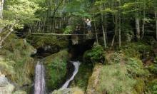 Parc de loisirs AKROBRANCH d'Orlu