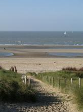 Dunes de Flandres By Marc Ryckaert (MJJR) (Own work) CC BY 3.0 via Wikimedia Commons