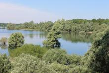 Lac de la Foret d'Orient