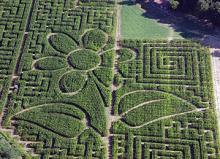 Labyrinthe Végétal photo de labyleo.com