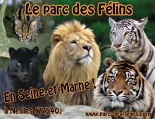 Parc des Félins