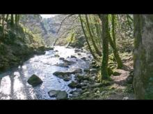 Vidéo des cascades de Gimel