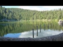 Vidéo du lac Vert ou lac de Soultzeren