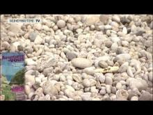 Vidéo du Cap d'Antifer