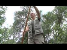 Promenades en barque à fond plat sur l'ile de Rhinau en vidéo