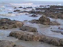 Vidéo des falaises à Ault