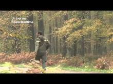 Forêt d'Eawy en vidéo