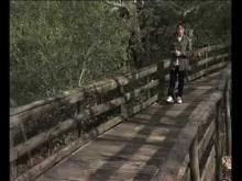Le village des Tortues en vidéo